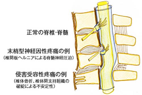 (図1)解説
